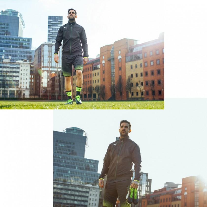 Cesc Fbregas in seinen evoTOUCH Fuballschuhen 2016 von PUMA