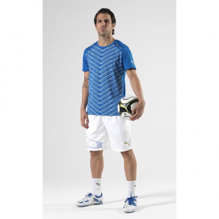 Cesc Fabregas: In seinem neuen Fußballschuh, dem PowerCat 1.12 von PUMA