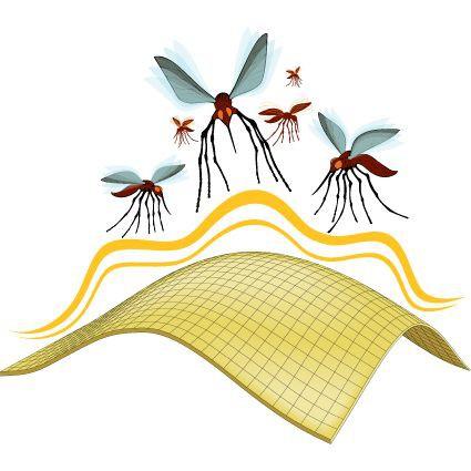 Insect Blocker Shield Grafik 2012