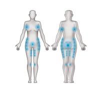 Cohesion Wrap Technology untersttzt und stabilisiert empfindliche Bereiche des weiblichen Krpers: Funktionszonen 2013