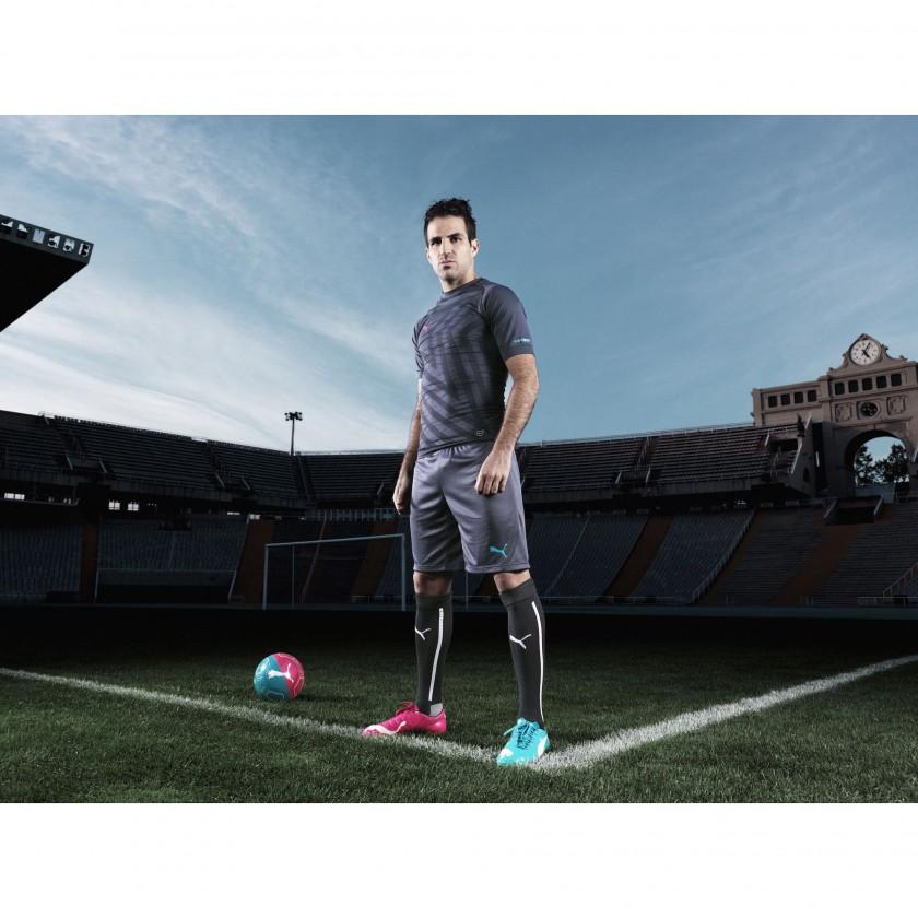 Cesc Fabregas - Mittelfeld Spanien - im evoPOWER Tricks Fußballschuh 2014 von PUMA