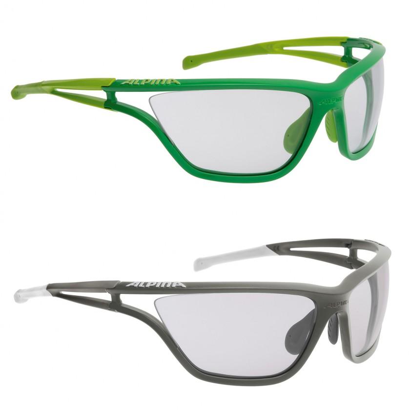 EYE-5 VL+ Sportbrille mit VARIOFLEX+ Scheiben grün, grau 2014/15 von Alpina Sports