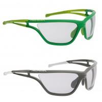 EYE-5 VL+ Sportbrille mit VARIOFLEX+ Scheiben grn, grau 2014/15 von Alpina Sports