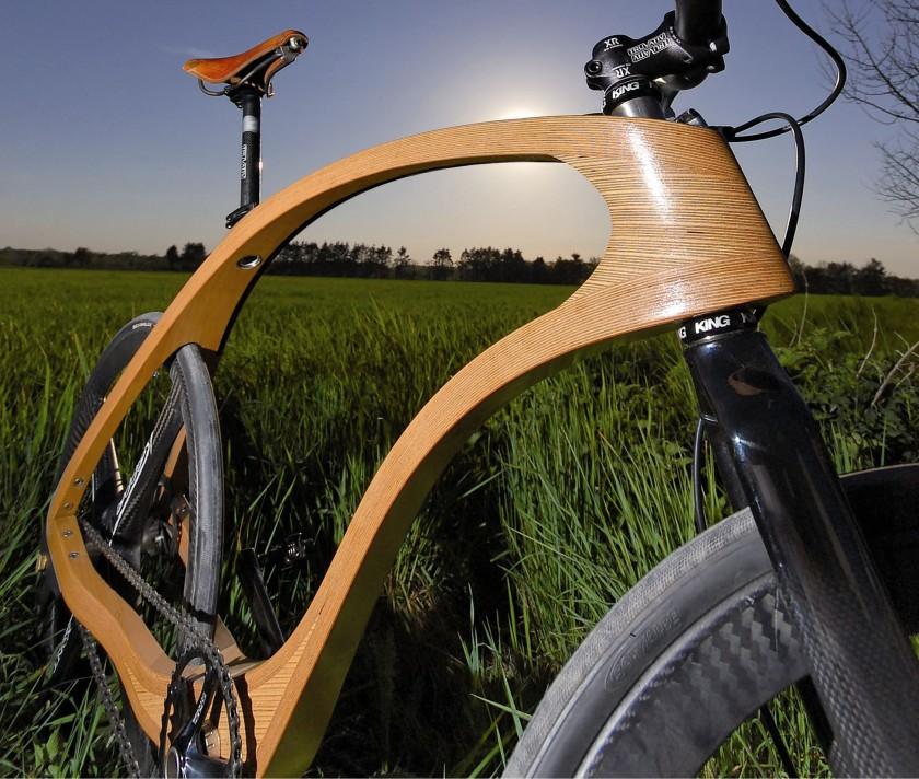Waldmeister Bike im Grnen - Rahmen