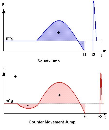 Squat Jump / Counter Movement Jump
