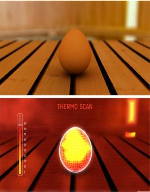 X-Technology: Funktionswäsche und das Ei in der Sauna