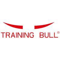 TRAINING BULL