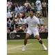 Novak Djokovic gewinnt erstmals in Wimbledon und löst Rafael Nadal als Nr. 1 der ATP Weltrangliste ab