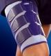 Mit MyoTrain erfolgreich gegen Muskelverletzungen