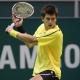J�rgen Melzer triumphiert  beim ATP-Turnier in Wien mit einem Dunlop-Tennisschl�ger