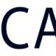 CA+ Carbon Alloy Composite