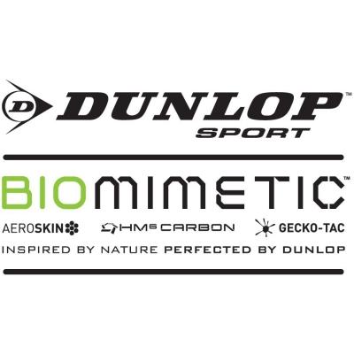 Biomimetic Technologie